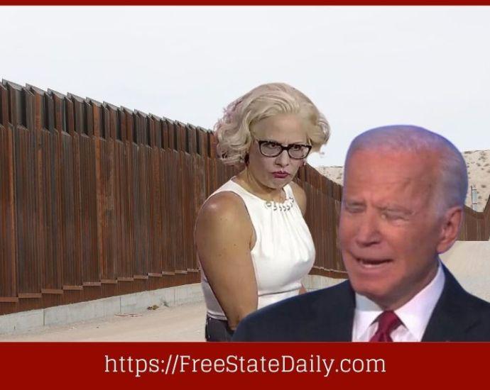 Frustrated Democrat From Arizona