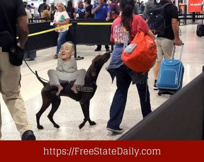 Schumer Wants To Send The TSA To The Dogs