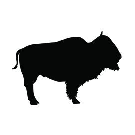 Buffalo Silhouette Stencil Free Stencil Gallery