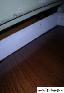 cleaning the baseboard and corners