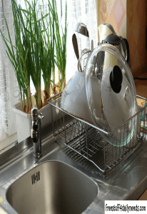clean dishes in kitchen