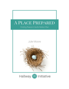 a place prepared book cover