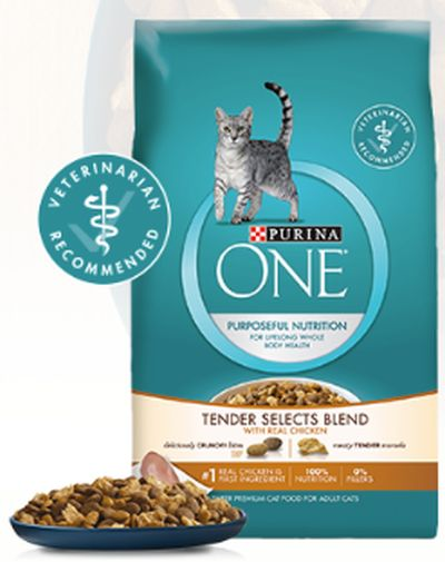 Purina ONE Chicken Tender Cat Food
