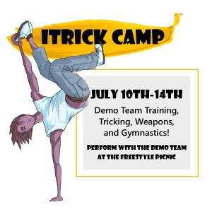 freestyle-martial-arts-tricking-summer-camp