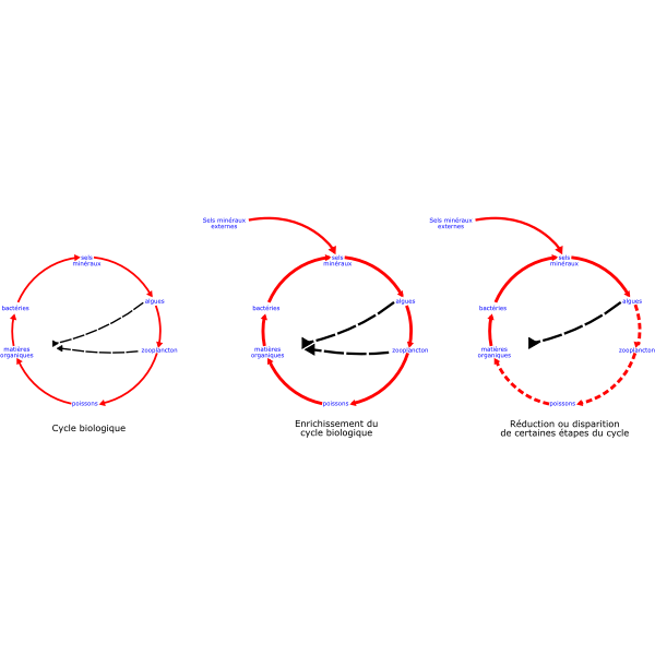 eutrophisation cycle | Free SVG