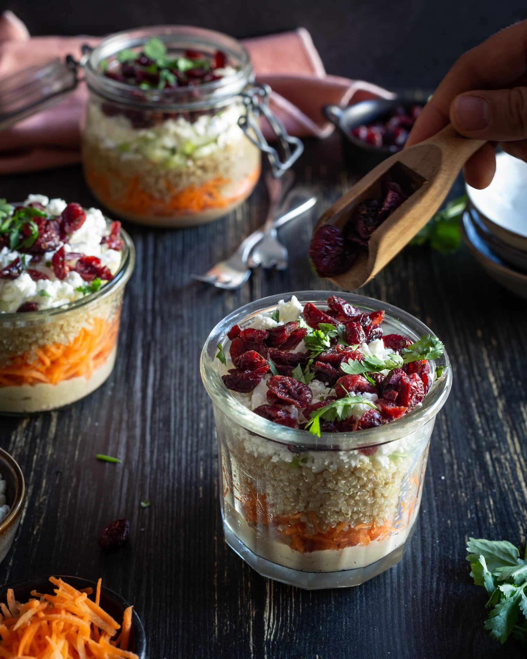 Salade végétarienne d'hiver au Quinoa, Houmous et Cranberries (Sans Gluten)