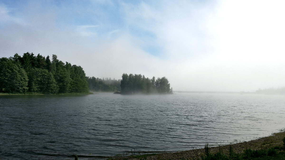 Otsolahti fog in Midsummer.