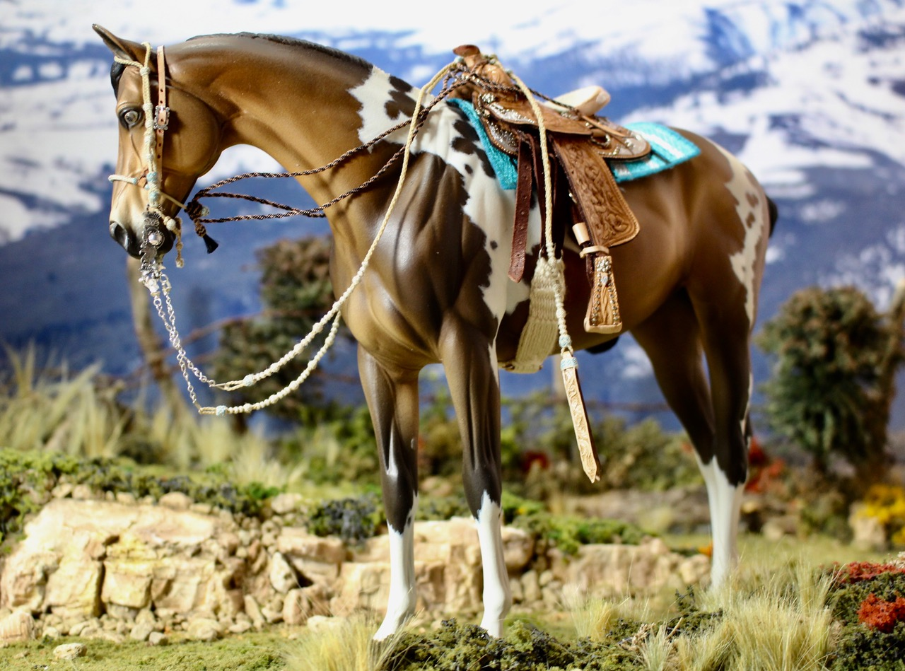 aaaand here you can see all the gear that a vaquero or buckaroo would use. First the young horse is taught to respond to the bosal, then gradually taught to carry the spade bit, while the rider uses first the mecate reins and then gradually starts using the romal reins.