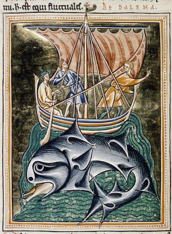 Whale, Ashmole Bestiary.