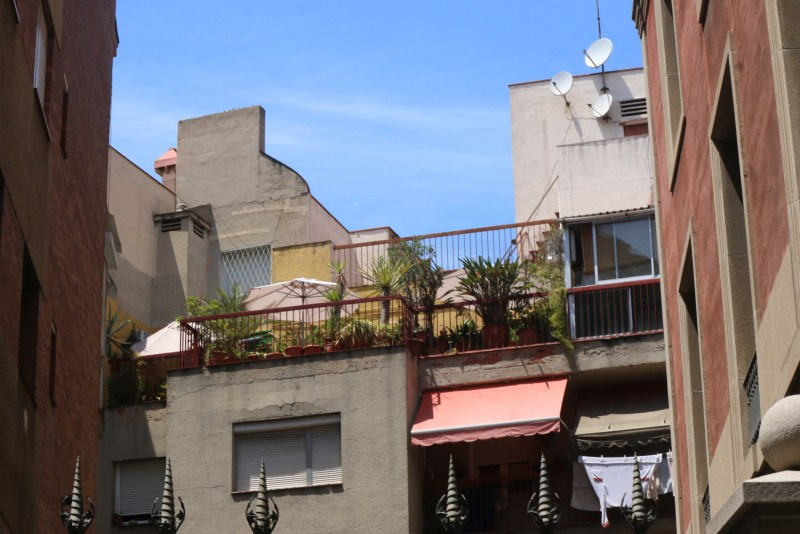 Small balcony with many potted plants