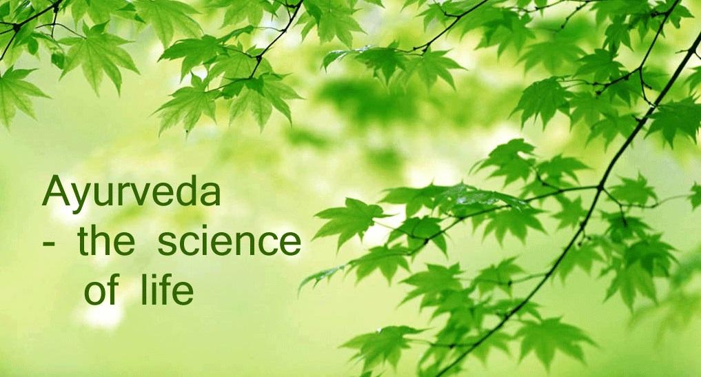 Image courtesy http://hindu.bz/indian-ayurveda-mother-earths-medical-system/