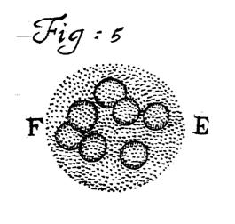 Van Leeuwenhoek 1700 Figure 5