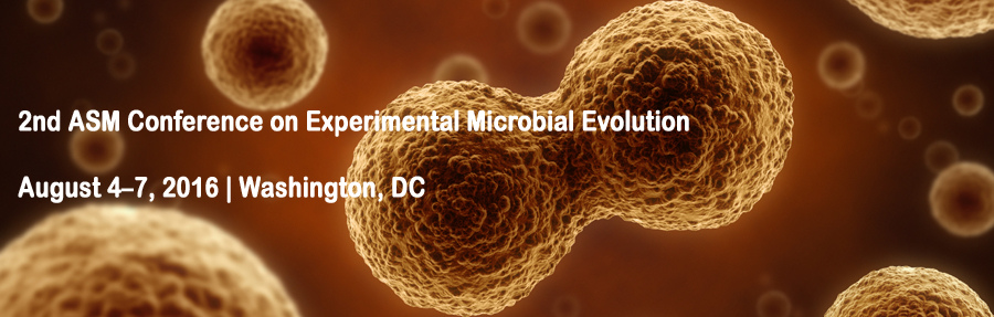 Experimental_Microbial_Evolution_Stock_photo11