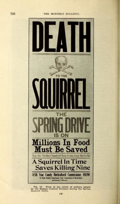 deathtothesquirrelmenace