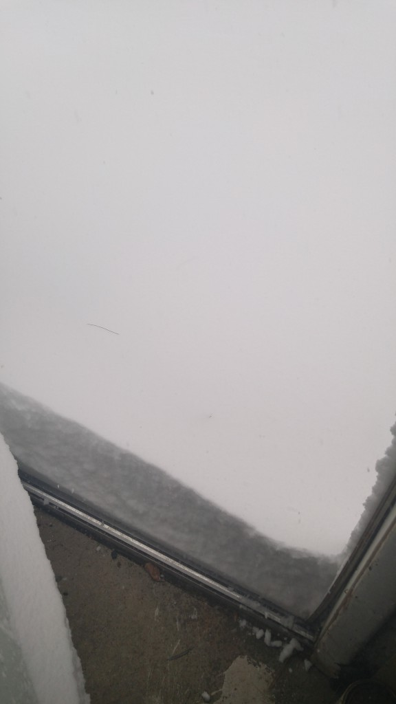 2017.02.09 - Snow on Long Island 1
