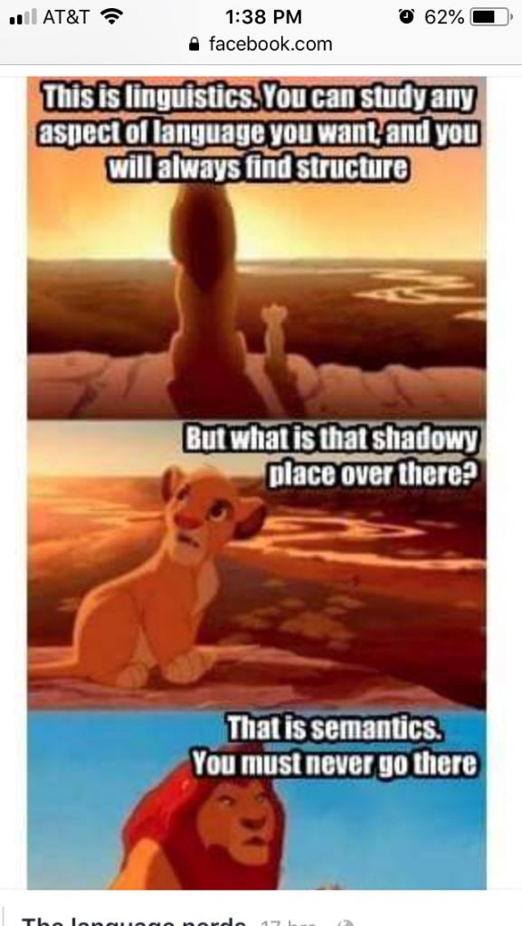 Mufasa: This is linguistics. you can study any aspect of language you want and you will always find structure. Simba: But what is that shadowy place over there? Mufasa: That is semantics. You must never go there.