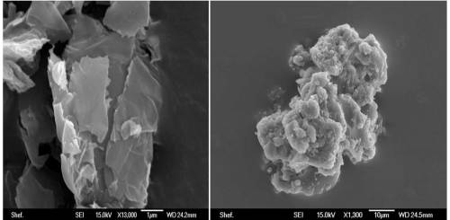 A, Sheet-like inorganic material recovered from the stratosphere which is clearly not biological; and B, a  clump of stratospheric cosmic dust which includes coccoid and rod shaped particles which may, or may not, be  bacteria.