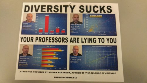 diversitysucks