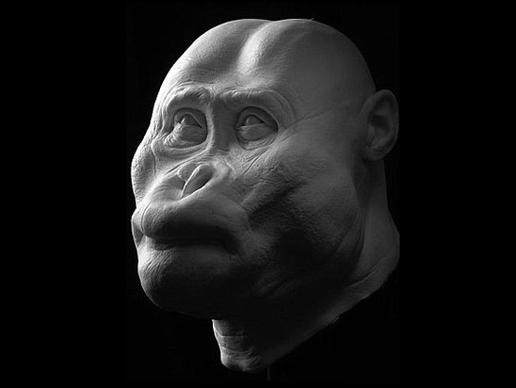 storymaker-early-human-ancestors-faces3-515x388