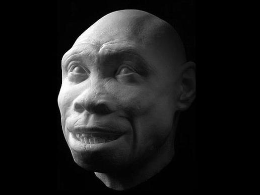 storymaker-early-human-ancestors-faces6-515x388