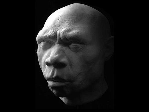 storymaker-early-human-ancestors-faces7-515x388