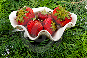 Stock Photography - Strawberry in clam