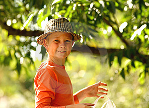 Stock Photos - Young peacanut collector