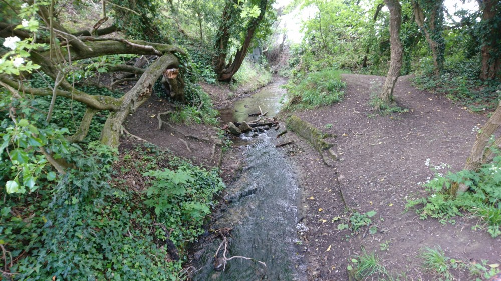 The lovely stream next to the Weston Turville reservoir