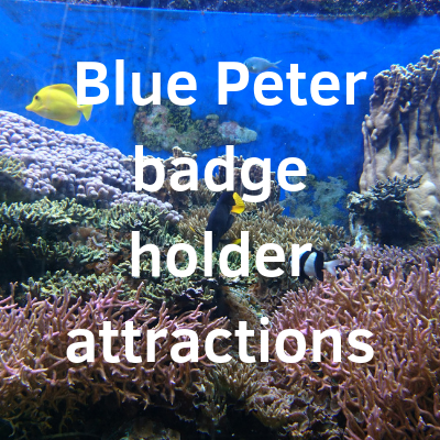 Blue Peter badge holder attractions | Free Time with the Kids