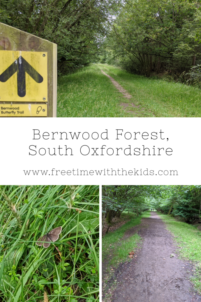 Bernwood Forest Review | South Oxfordshire family walks | Review by Free Time with the Kids