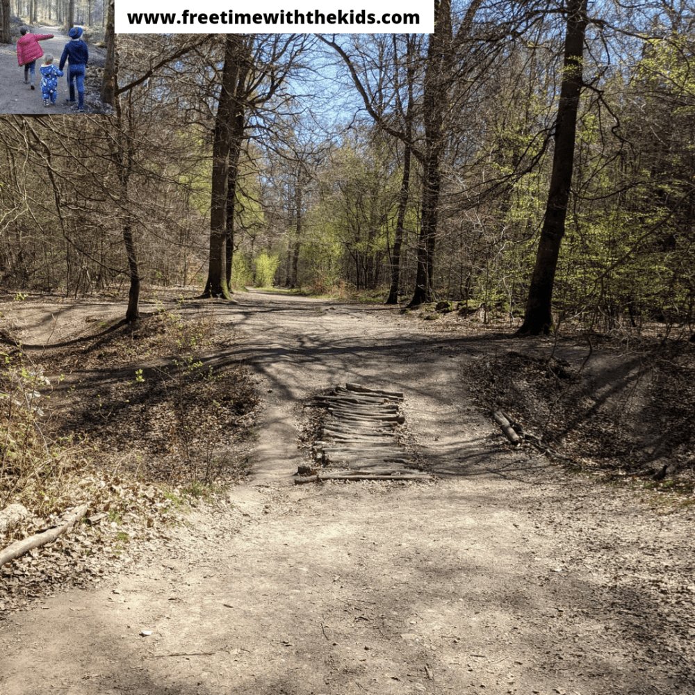 Penn Woods | Amersham, Buckinghamshire | Woodland walks | Bluebells | Review by Free Time with the Kids