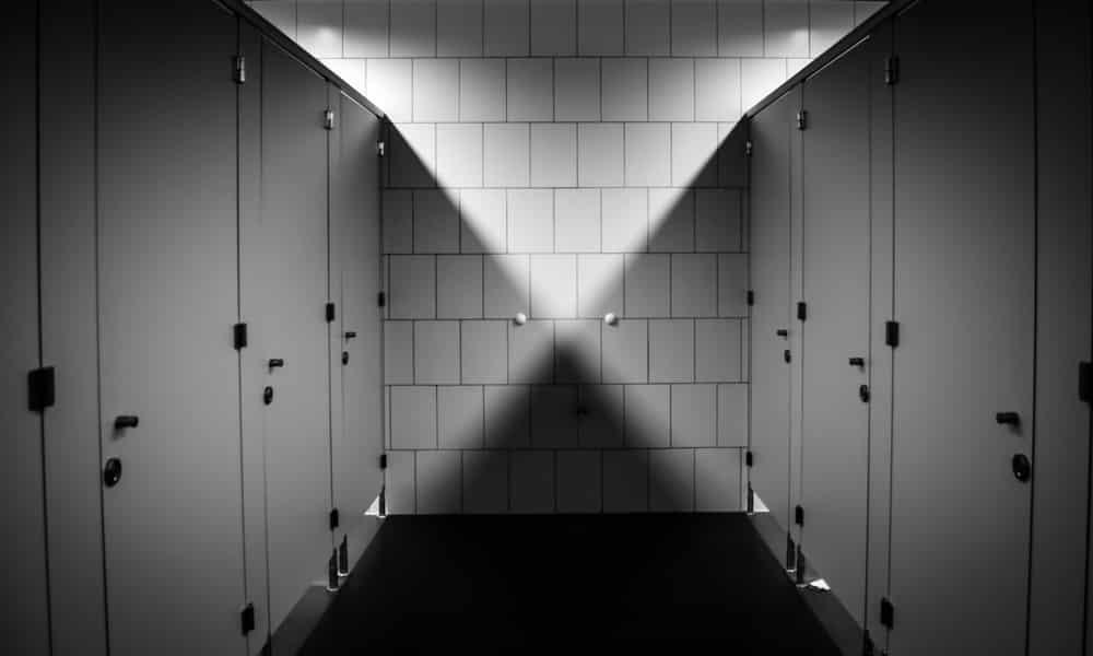 License Free Toilet Flush Sound Effects
