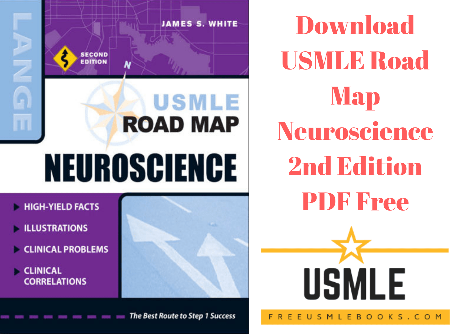 Download Usmle Road Map Neuroscience 2nd Edition Pdf Free Direct Link