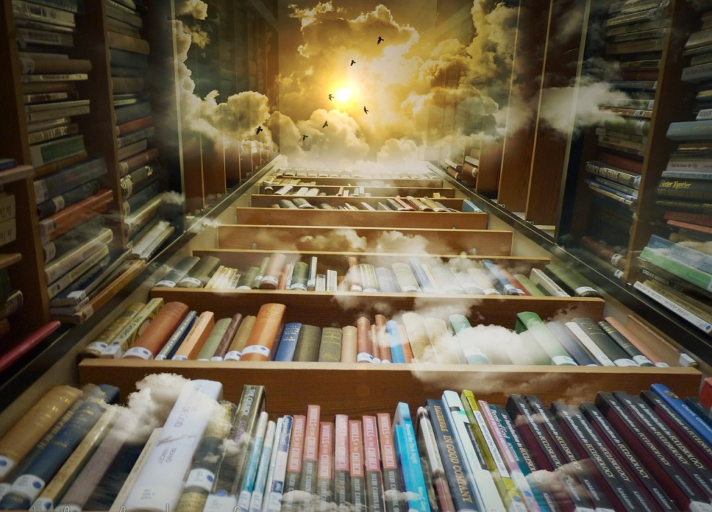 Library shelves into the heavens