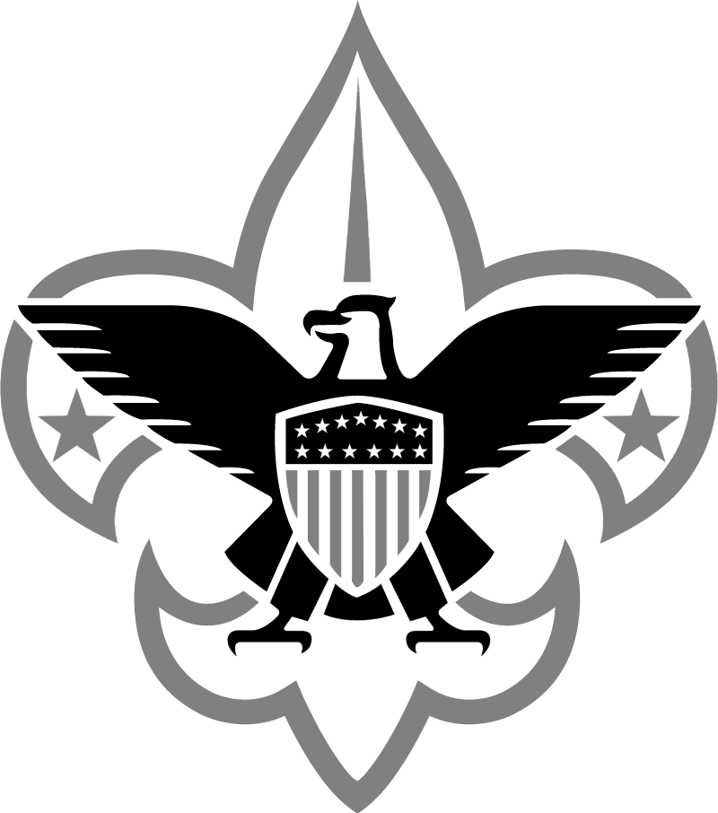 Boy Scouts 1 ⋆ Free Vectors Logos Icons And Photos Downloads