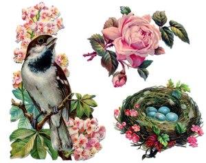 whimsical bird eggs flowers 1