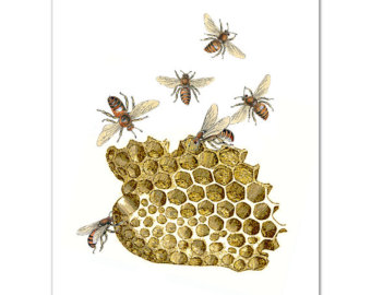 A vintage illustration of golden honeycomb and bees.