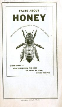 A vintage illustration for honey facts.