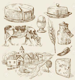 milk pic 01