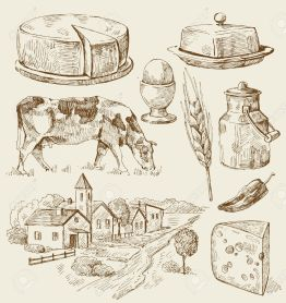 milk pic 13