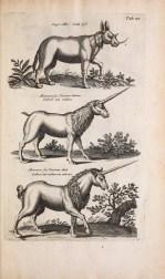 antique unicorn print