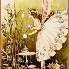 fairies pic 1
