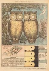 public domain vintage owl image 1