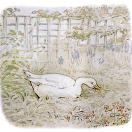 Public Domain vintage children's book illustration of a duck from Beatrix Potter