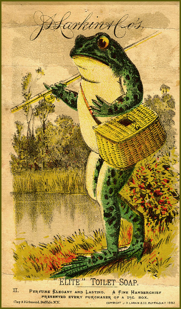 Something about a frog fishing just looks peaceful.