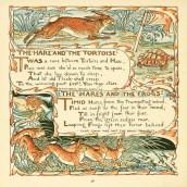 public domain tortoise hare aesop illustration vintage childrens books
