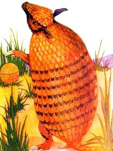 public domain vintage childrens book illustration animal armadillo