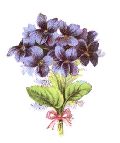 public domain vintage clipart floral bouquet of blue flowers