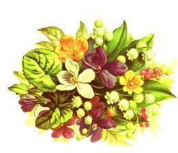 public domain vintage clipart floral bouquet with leaves