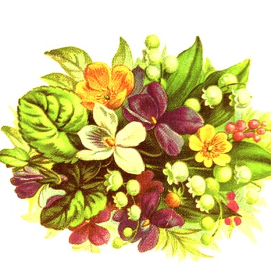 public domain vintage clipart floral bouquet with leaves